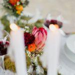 Fleurs de couleurs vives